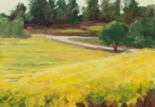 Golden Vineyards, oil, 11 x 14 © Skip Andreae all rights reserved